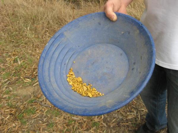 Как золотоискатель своими руками