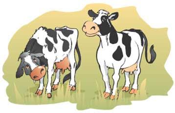 Курсовая работа на тему кетоз рогатого скота
